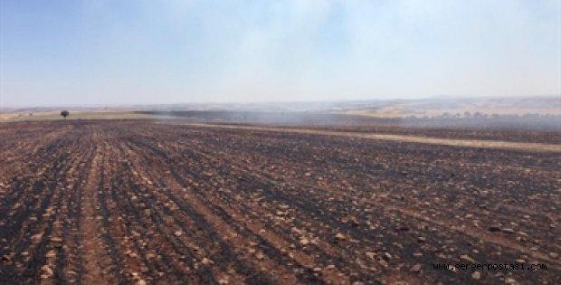Photo of Kahta'da Anız Yangını Meyve Bahçeleri Zarar Gördü