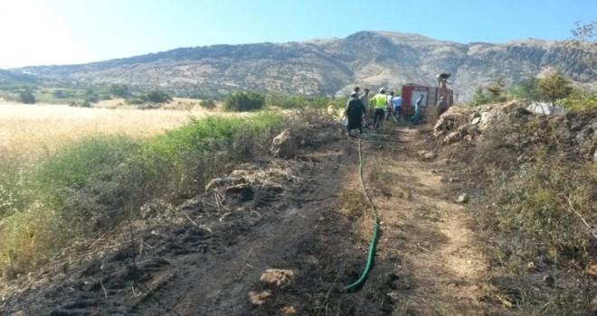 Photo of Dikkat Orman Yangınını Önledi