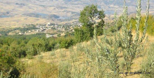 Photo of Eskikent, Gerger