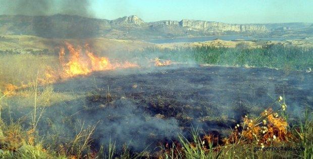 Photo of Gerger'de Anız Yangını