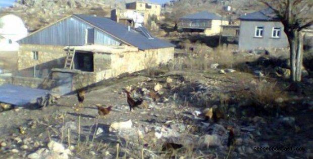 Photo of Yayladalı, Gerger